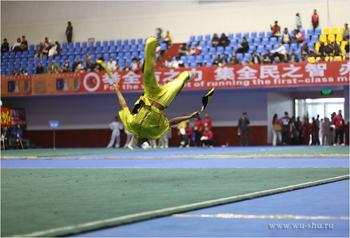 wushu-taolu-salto