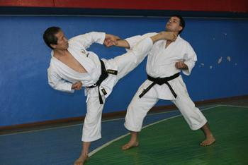 karate-high-kick