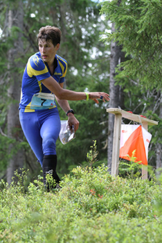 orienteering-check-point