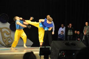 free-fighte-ukrainian-cup-2012
