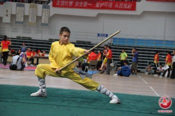 kungfu-wc2012