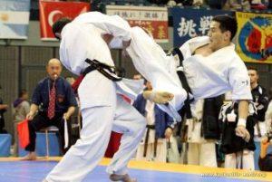 kyokushin-karate