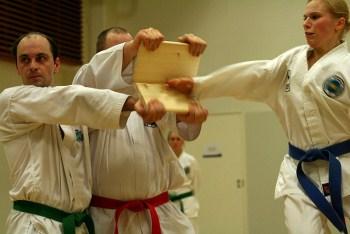 taekwondo-rozbyvannya-doshok