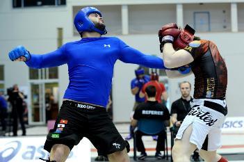 pankration-euro-2013-MMA