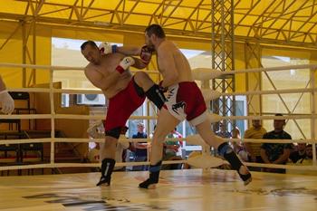 MMA-euro2013-2