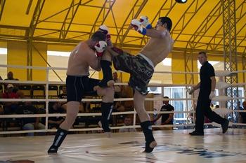 MMA-euro2013-knee-kick