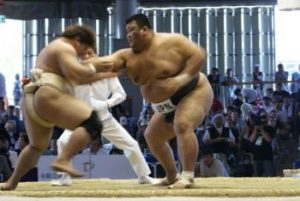 world-combat-games-sumo