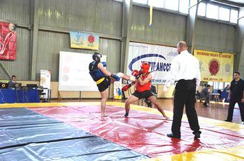 wushu-sanda-ukr-champ-2014