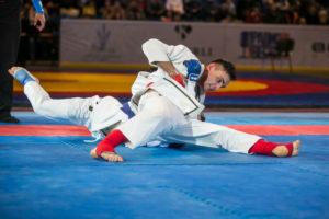Geraskin_ju-jitsu_UCG2015