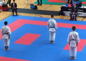 karate_austria2016