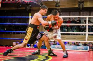 pro-boxing-show-2017_22.04_dalakyan